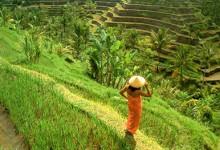 Bali_Schamanismus_11